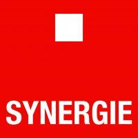 logo_synergie_Quadri
